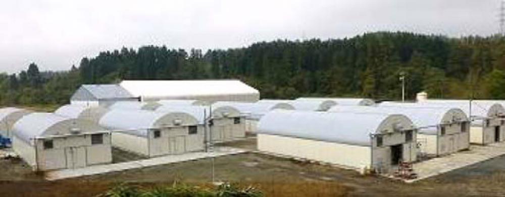 農業生産法人 有限会社 舟形マッシュルーム :画像