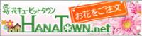 hanatown_logo.jpg