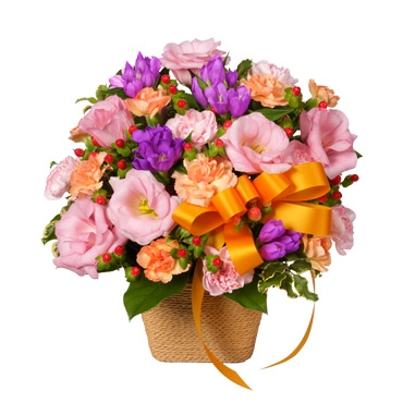 2014/09/06 21:17/9月15日 敬老の日は花ピューピットの贈り物を(^O^)/