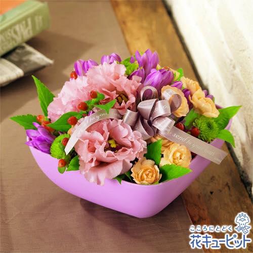 2017/09/13 13:02/9/18 敬老の日のステキな花贈りは、花キューピットのお店で。(^O^)/