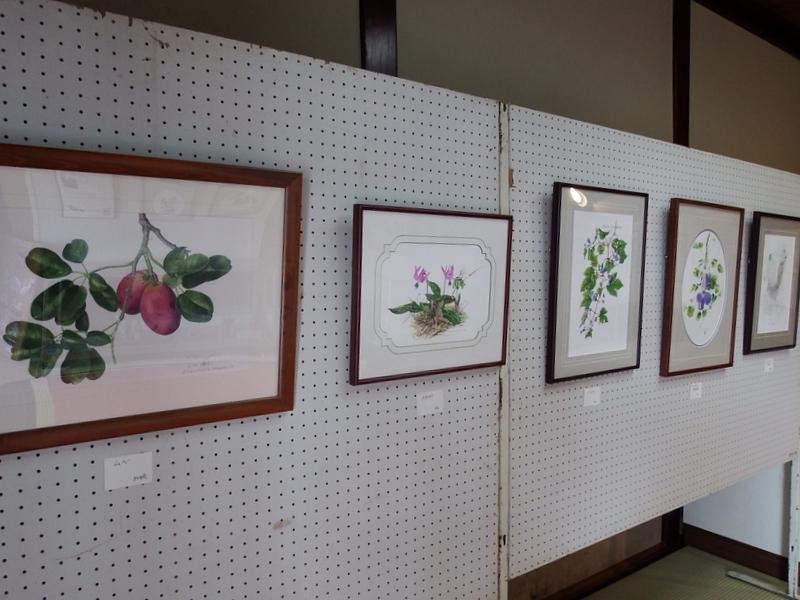 ふるさと資料館『ボタニカルアート展』