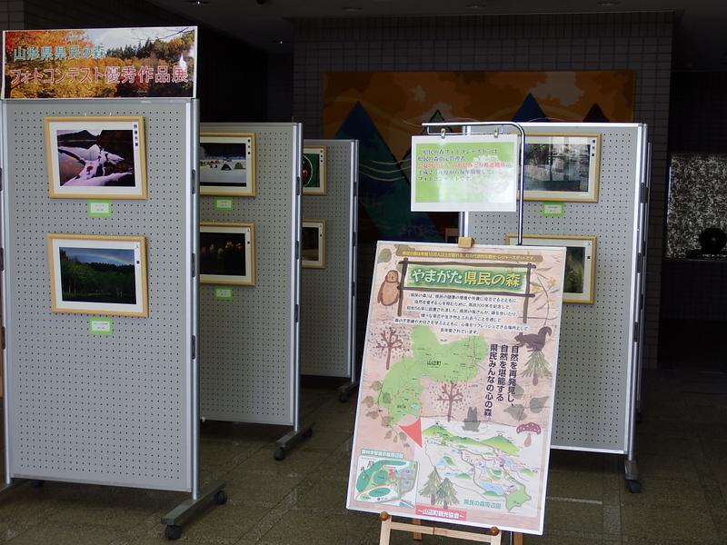 """Kenmin-no-Mori (Prefectural Public Forest) photo contest excellence exhibition"" now being held"