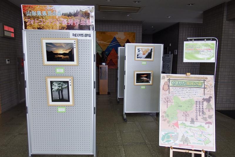 「県民の森フォトコンテスト優秀作品展」を展示しています