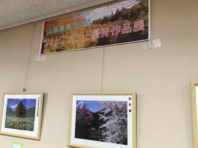 『県民の森フォトコンテスト優秀作品展』開催中