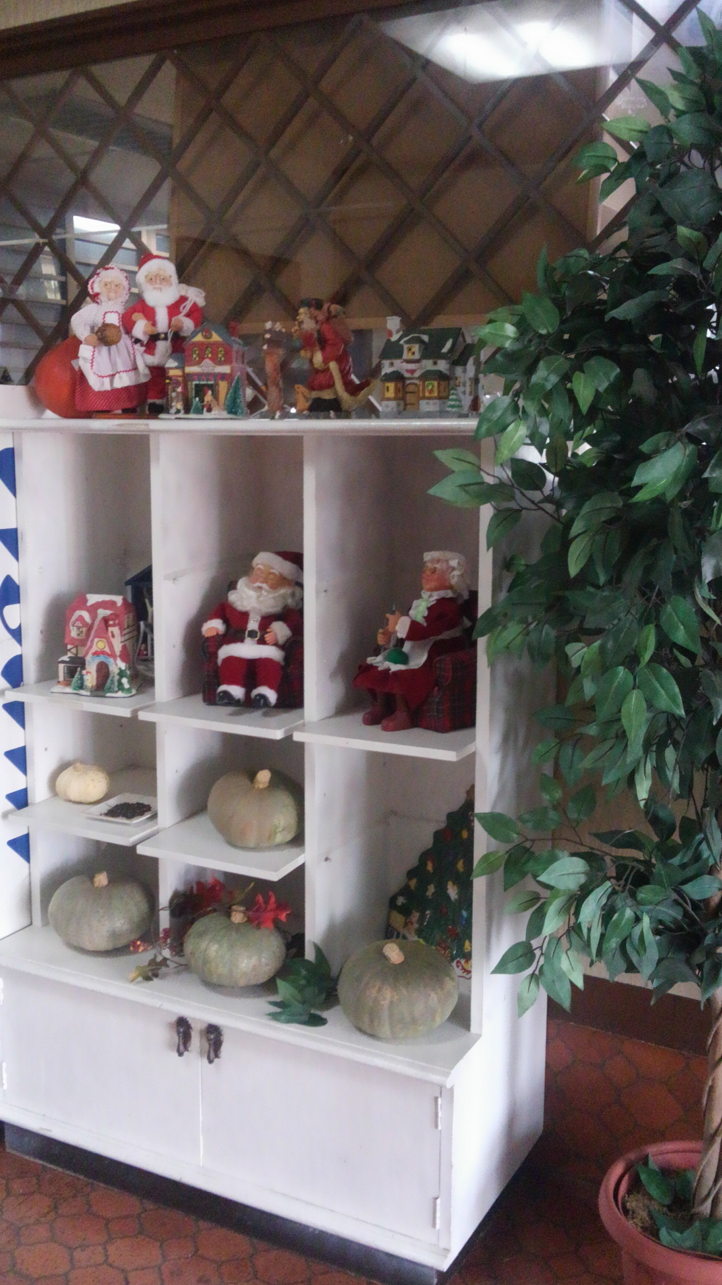 アグリパークのクリスマスディスプレイ:画像