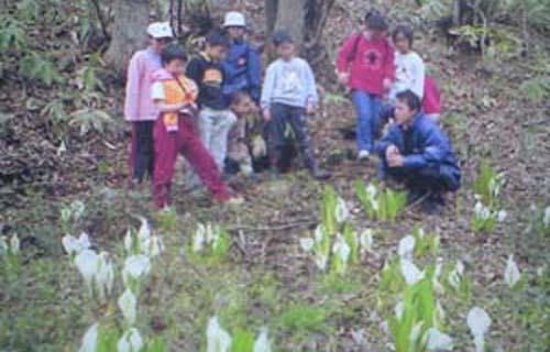 2009/04/05 18:12/11.杉山と長谷地エリア