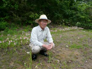 2009/04/22 07:08/「町在来種の栽培を」ヒメサユリ愛好会の取り組み