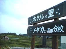 2011/06/30 18:42/〈見学〉朝日町のホタルいよいよ!