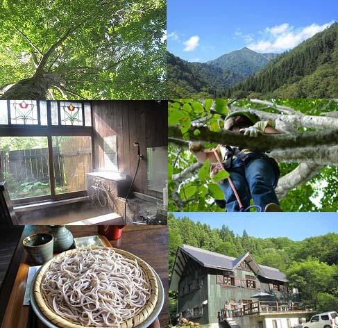 2015/09/27 18:10/秋のブナ原生林散策とツリーイングin朝日鉱泉10/17