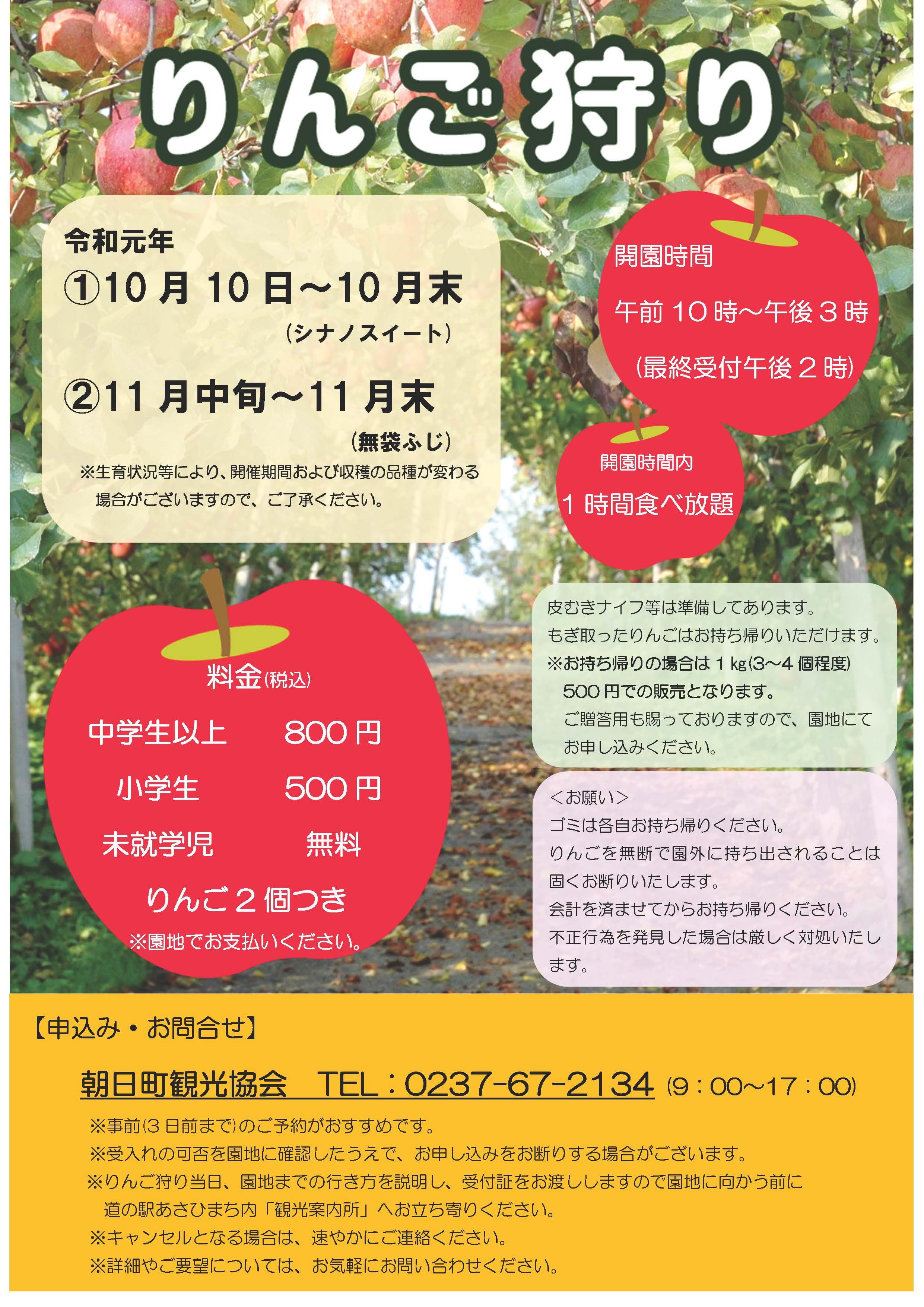 [Asahi-machi] Guidance of 2019 apple hunting ※It was finished ※: Image