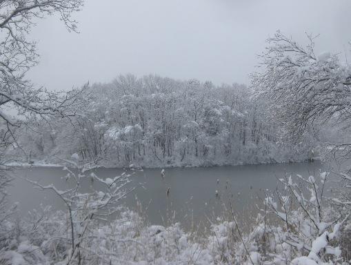 雪降りつむ