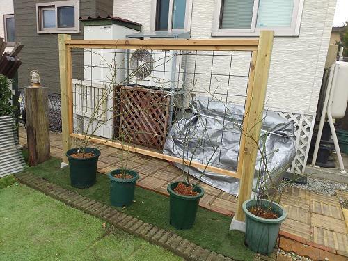《バラ庭》ガーデンワーク~・・フェンス設置!!
