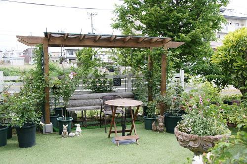 《バラ庭》ガーデンワーク~・・簡易パーゴラへ日除け設置!