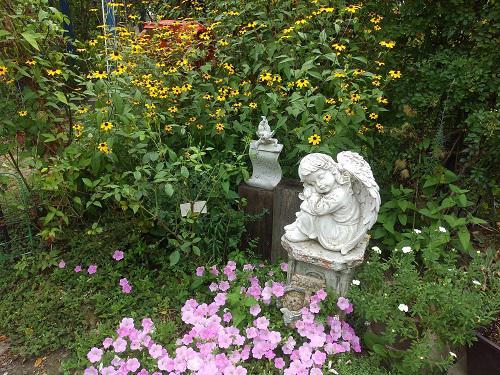 《バラ庭》ガーデンNOW〜・・もう8月!庭の趣きも変わり・・・/