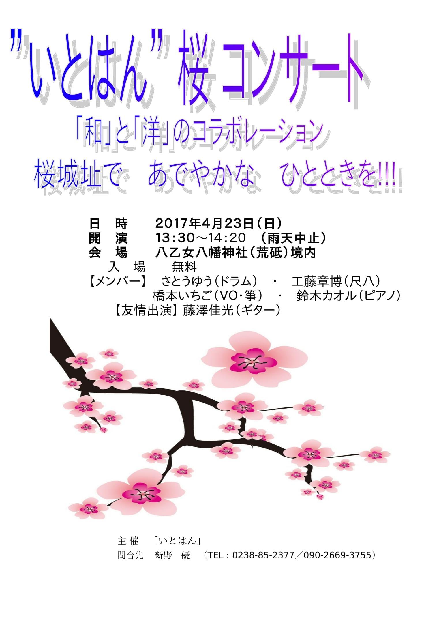 """""""いとはん""""桜コンサート!:画像"""