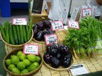 2010/06/21 10:05/●展示・商談会●加工・業務用野菜産地と実需者との交流会