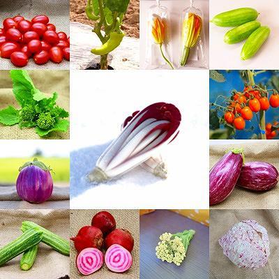 2015/11/30 14:06/かほくイタリア野菜