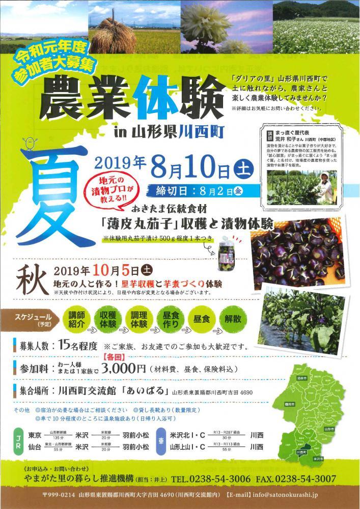 農業体験『 薄皮丸茄子収穫と漬物体験 』が開催されます(終了):画像