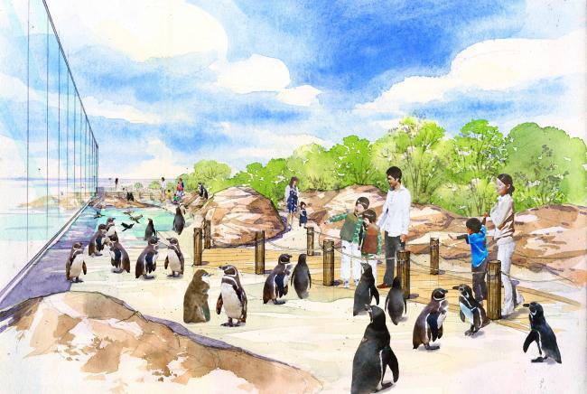 水族館のペンギンエリアに・・・イデアルファイバー