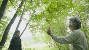 「カキと森と長靴と」上映会のお知らせ:画像