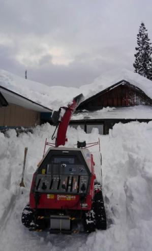 雪の晴れ間に