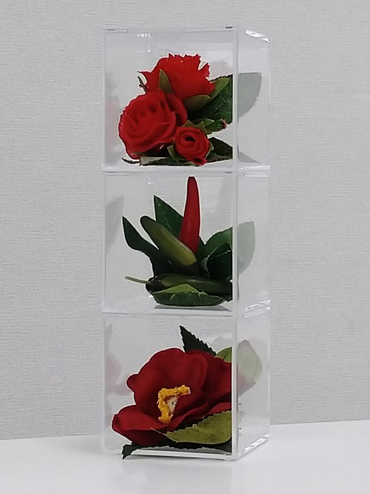 てのり花-TRIANGLE|赤い花と実