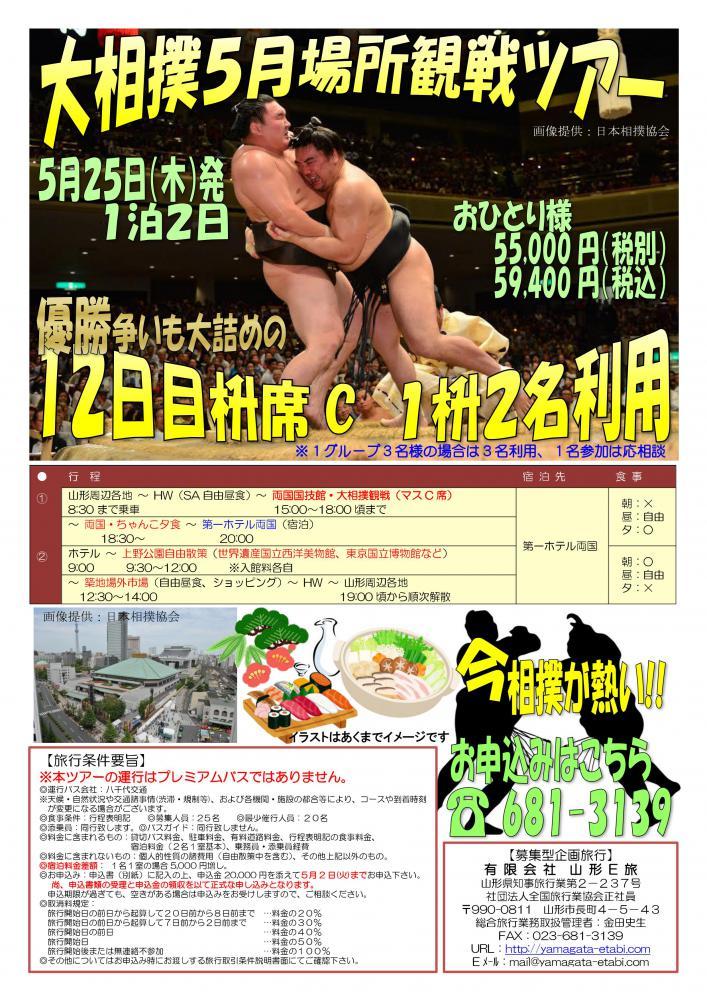 5月25日大相撲ツアー空きが出ました!!:画像