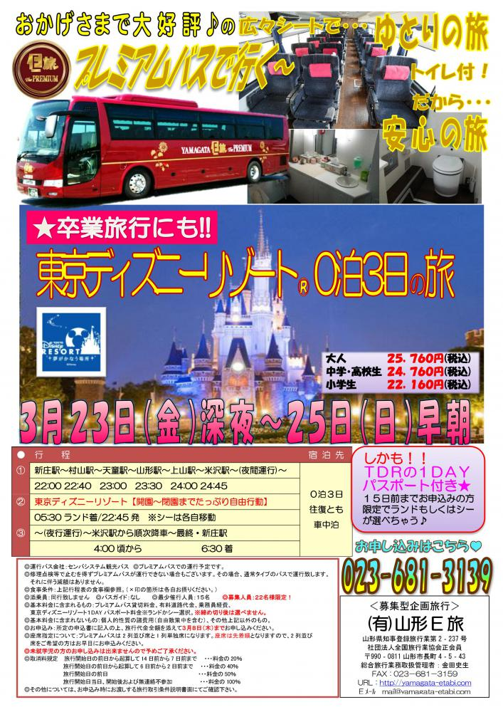 プレミアムバスで行く!卒業旅行にも!!東京ディズニーリゾート0泊3日の旅★:画像