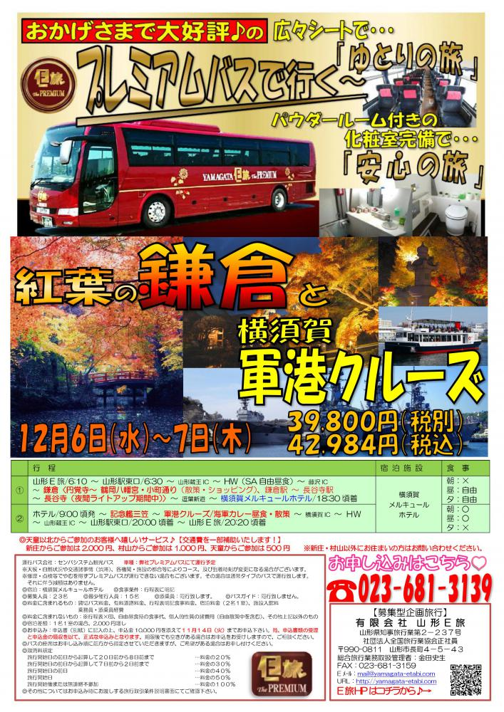 プレミアムバスで行く!紅葉の鎌倉と横須賀軍港クルーズ★:画像
