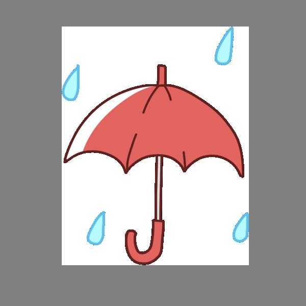 雨の季節がやってきた~!