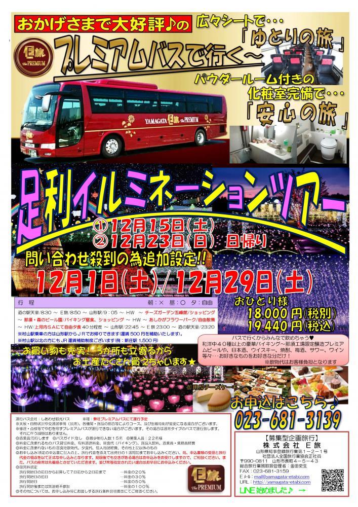プレミアムバスで行く!足利イルミネーションツアー★:画像
