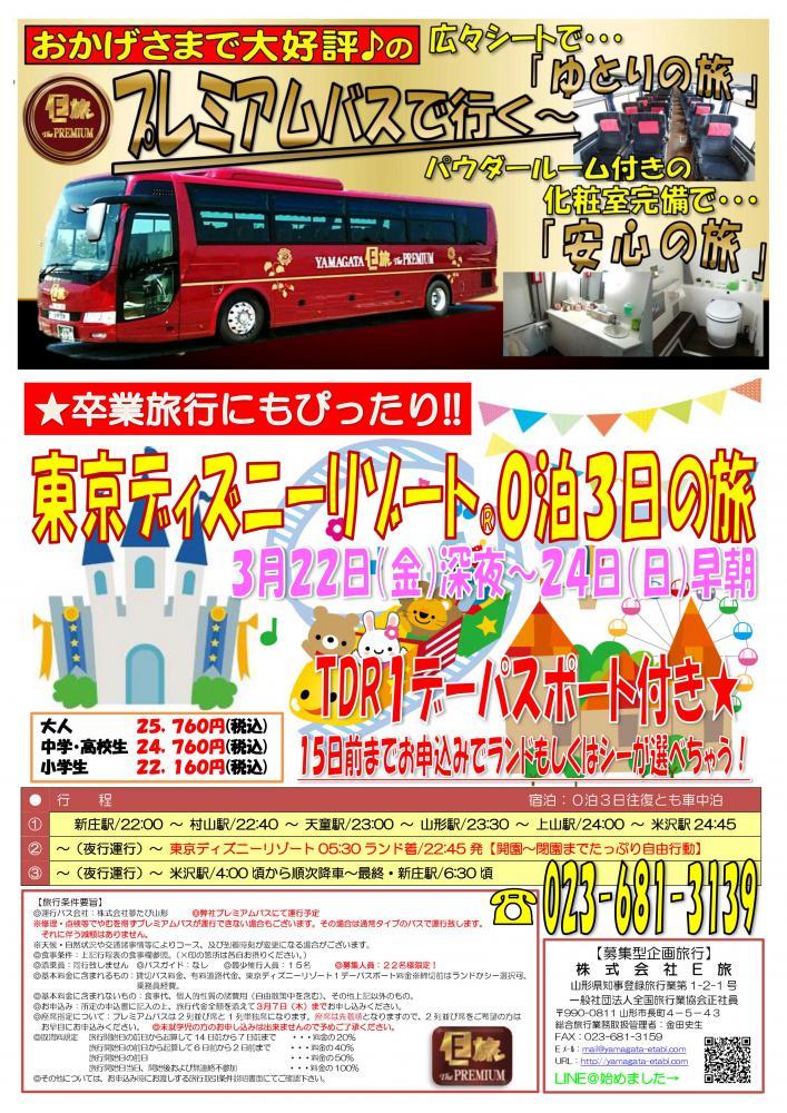 プレミアムバスで行く!東京ディズニーリゾート0泊3日の旅★:画像