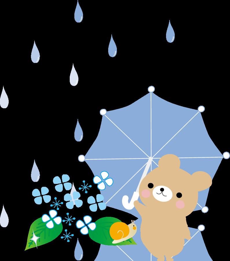 梅雨入りしました:画像