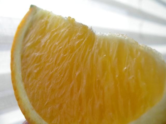 愛媛県中島産《デリッシュネーブル》無加温ハウス栽培:画像