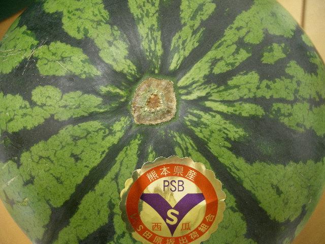 熊本県産《VSすいか》VS農法による強い土:画像