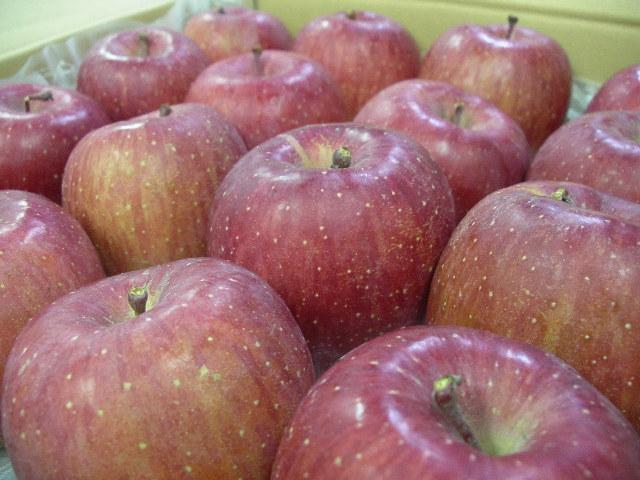 青森県弘前産《サンふじりんご》生産量第1位:画像