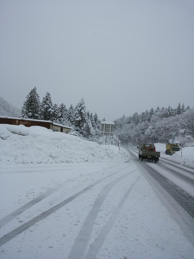 なごりの雪。