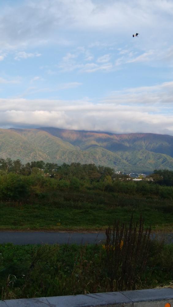 山が色づいてる!!。