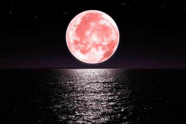 【ストロベリームーン】昨夜の月をご覧になりましたか?:画像