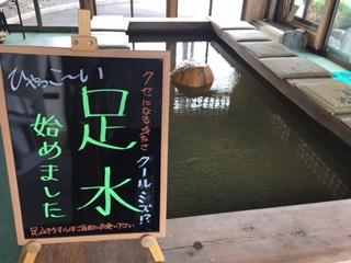 【勝って帰る】カエル温泉あります:画像