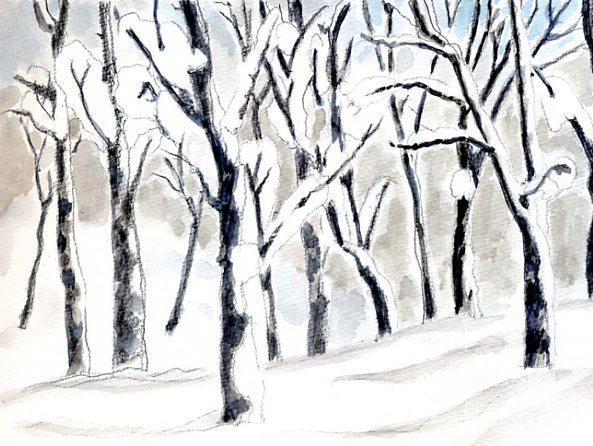 着雪のゴガラミ