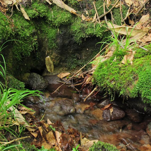 流水の源へ