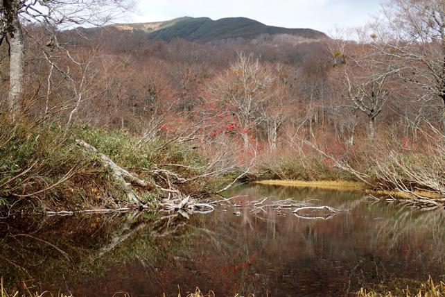 カワクルミ沼と湯殿山