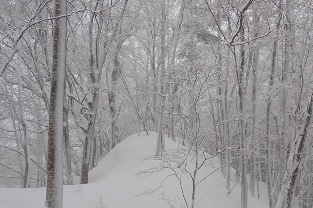 時折の風雪
