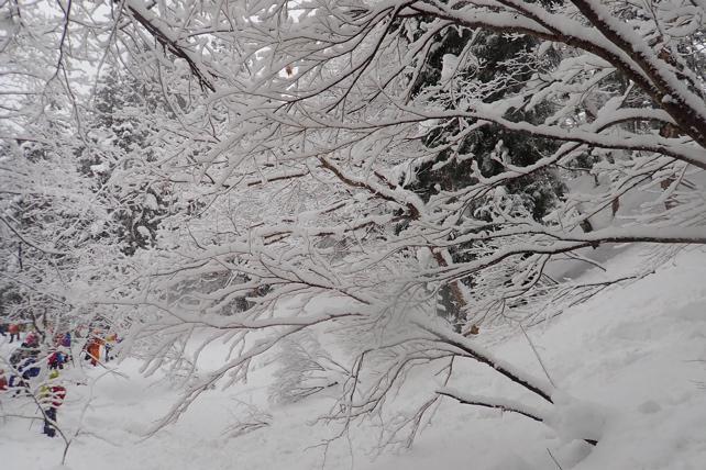風雪の午後