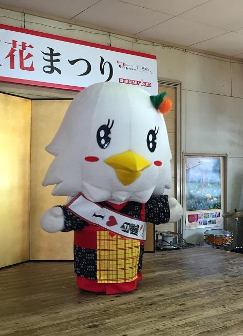 第23回 白鷹紅花まつり/