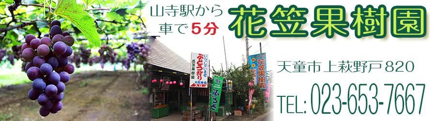 花笠果樹園 ~山寺駅から車で5分の観光果樹園~