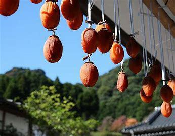 平成30年10月20日(土)〜21日(日)秋の里山体験ツアーを行います。:画像