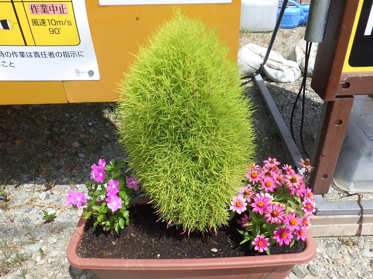 萩生川護岸工事:画像