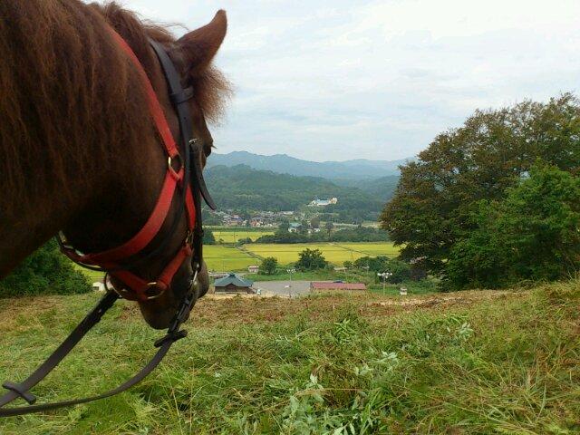 馬目線の写真とともに…10月の予定です:画像